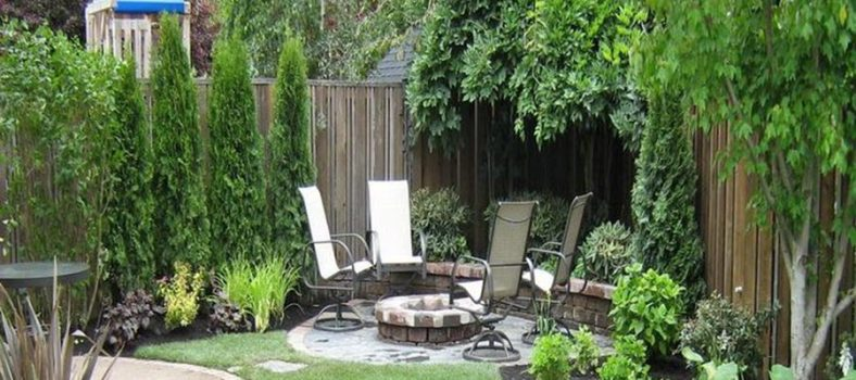 stunning backyards for cheap
